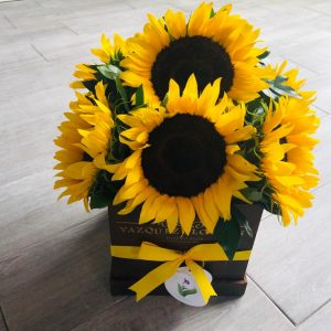 Girasoles Box