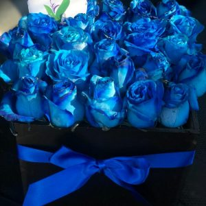 Caja con 24 Rosas Azules