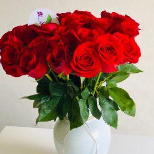 Jarron Nara 24 Rosas